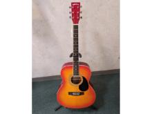 アコースティックギター SepiaCrue FG-10/CH